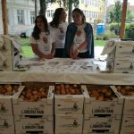 "dani-krompira-1-150x150 Razvojna agencija Žepče na manifestaciji ""Dani mladog krumpira – Ljubuški rani"""